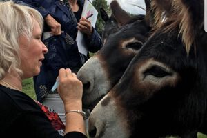 Sue Pitt with Donkeys