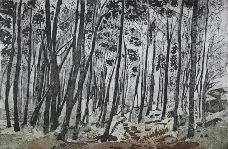Linda-Nevill Through-the-trees---landscape--Etching-&-aquatint