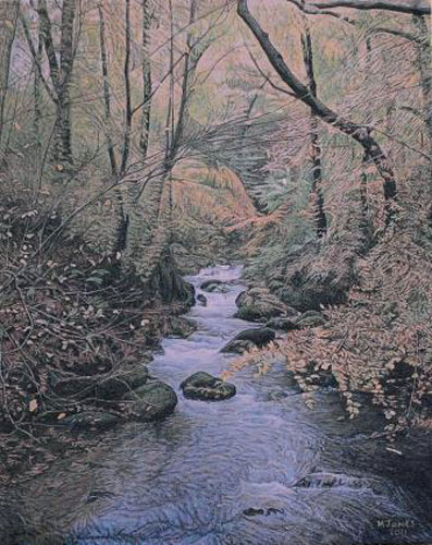 malcolm-Jones-Stock-Ghyll-Force-ws