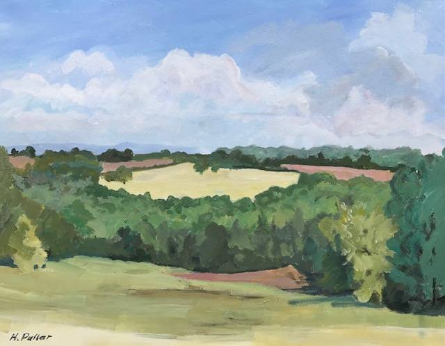 Wednesday 4th August sketching and painting at Bodenham Arboretum